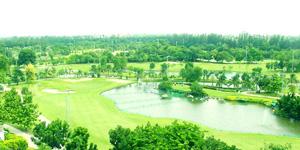 バンコクゴルフ02